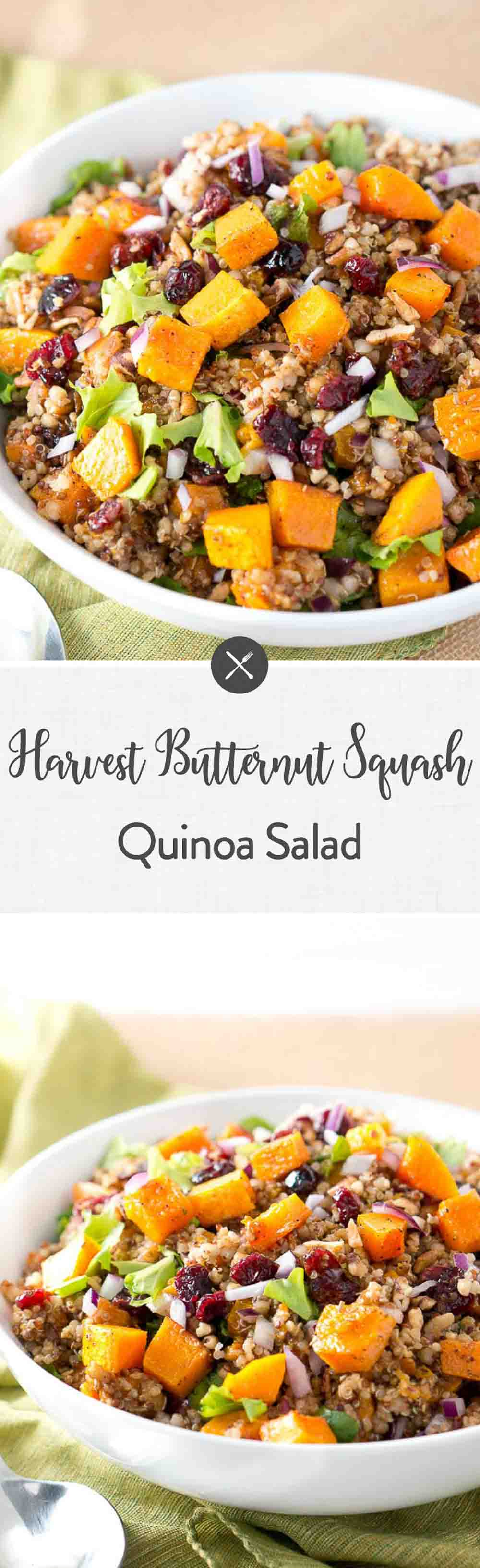 Delicious & healthy Butternut Squash Quinoa Salad that is surprisingly quick & easy to put together. Simple & Beautiful. Perfect side dish for the holidays. #thanksgiving #sides #healthy #glutenfree #holiday #paleo